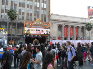 Fans and photographers gathering for the Muppets Most Wanted premiere.